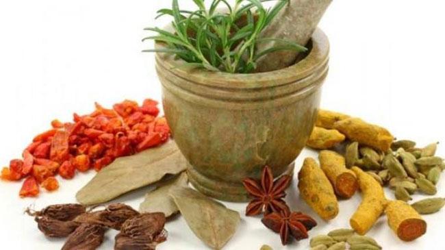 Penelitian Tentang Obat Herbal & Kesehatan Global
